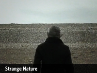 Strange Nature :: Made in collaboration with string duo The McCarricks as an interpretation of their music. The film is used primarily at live performances in which the musicians accompany the image, whilst the film provides the diegetic sound of sea, shingle and shipping forecasts.